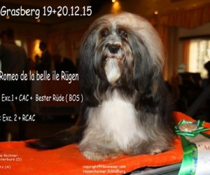 Grasberg 2015 Romeo