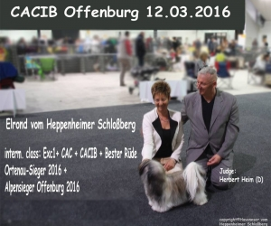 Offenburg 2016 Elrond