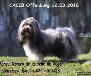Offenburg 2016 Romeo