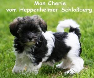 Mon-Cherie