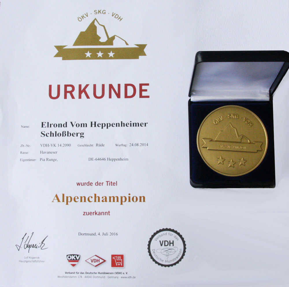 Alpenchampion