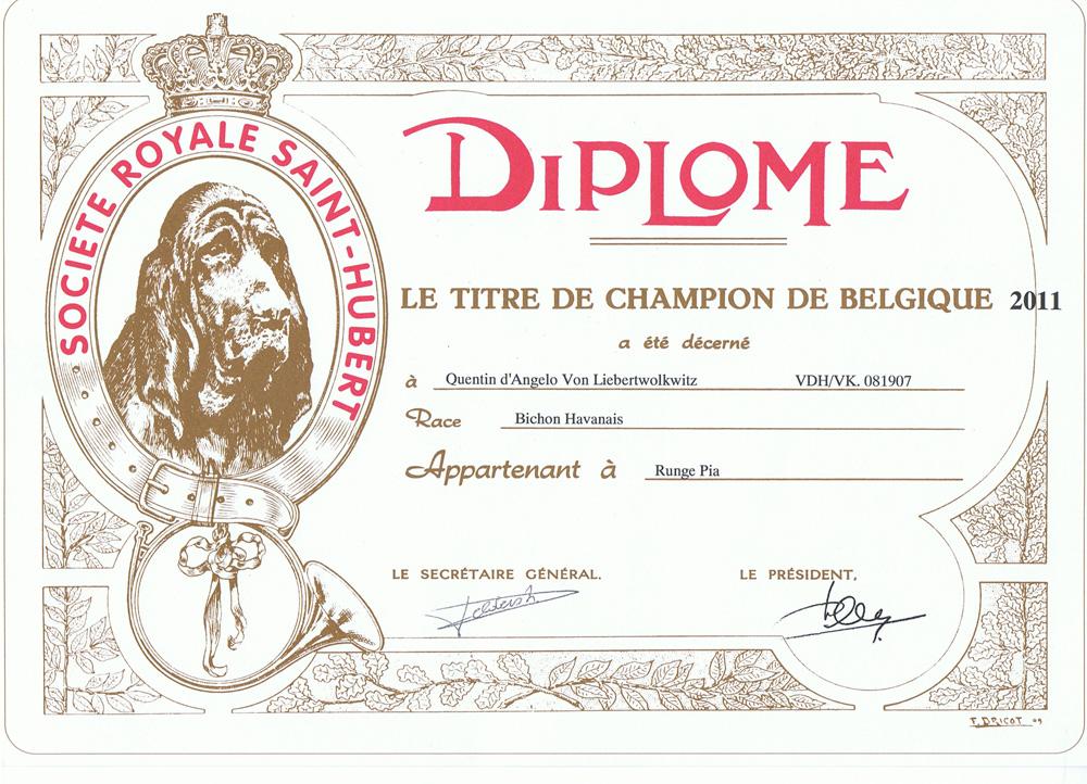 Diego Belgischer Champion 2ß011