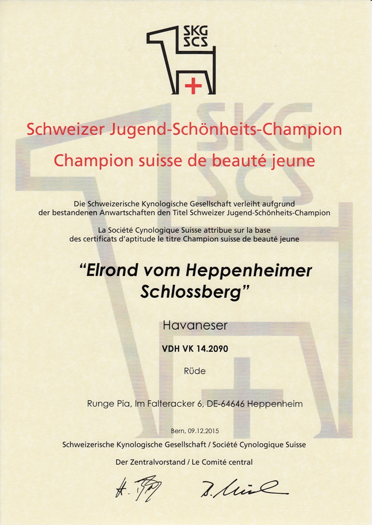 Elrond Swiss Youth Champ