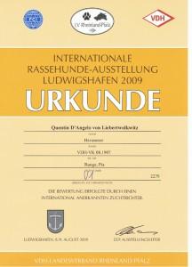 Ludwigshafen V1 2009