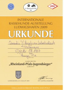 RheinlandPfalz Jugendsieger09
