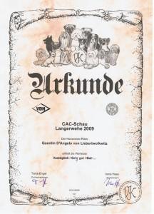 Urkunde Langerwehe 09
