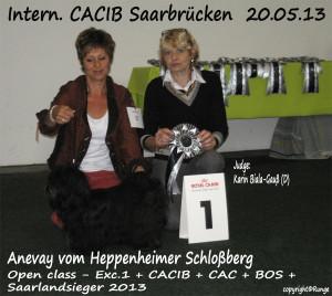 2013Saarbrücken
