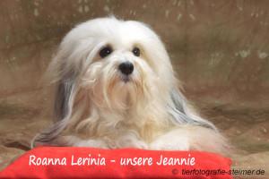 Jeannie1