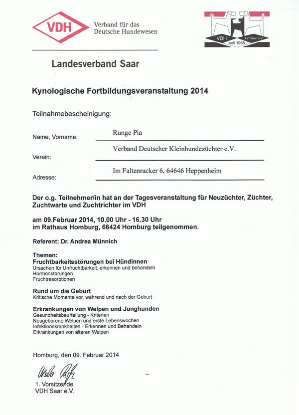 Kybo VDH-Saar 2014