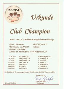 Amicella Austria Club Champion