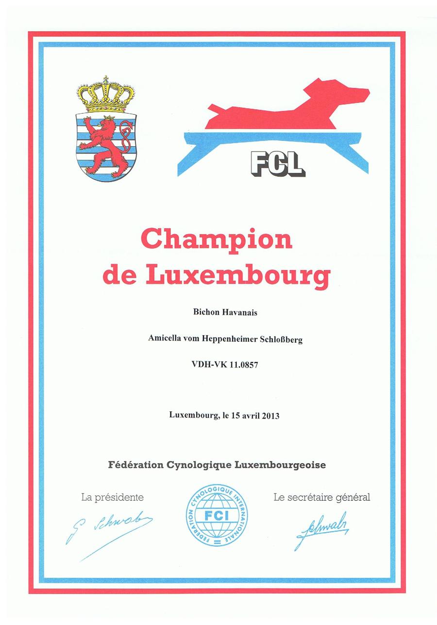 Amicella Lux-Champ