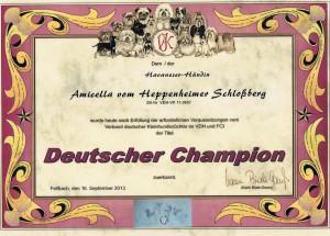 Amicella VK-Champion