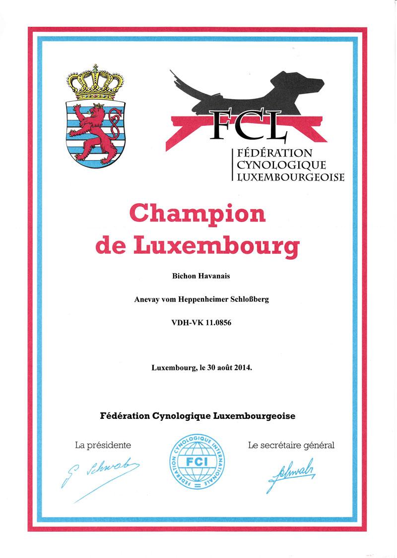 Anevay Lux Champion