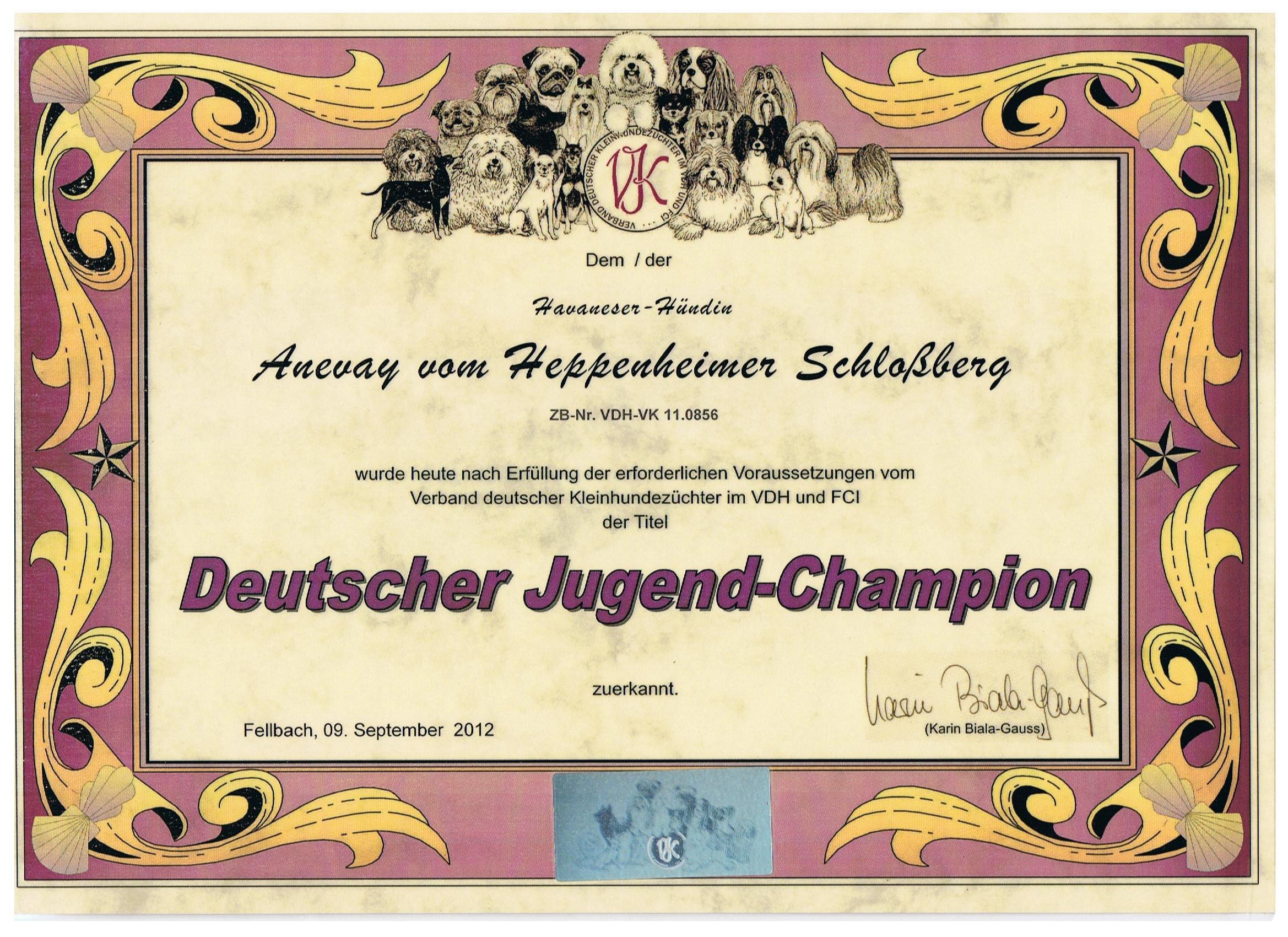 DJC VK- Anevay