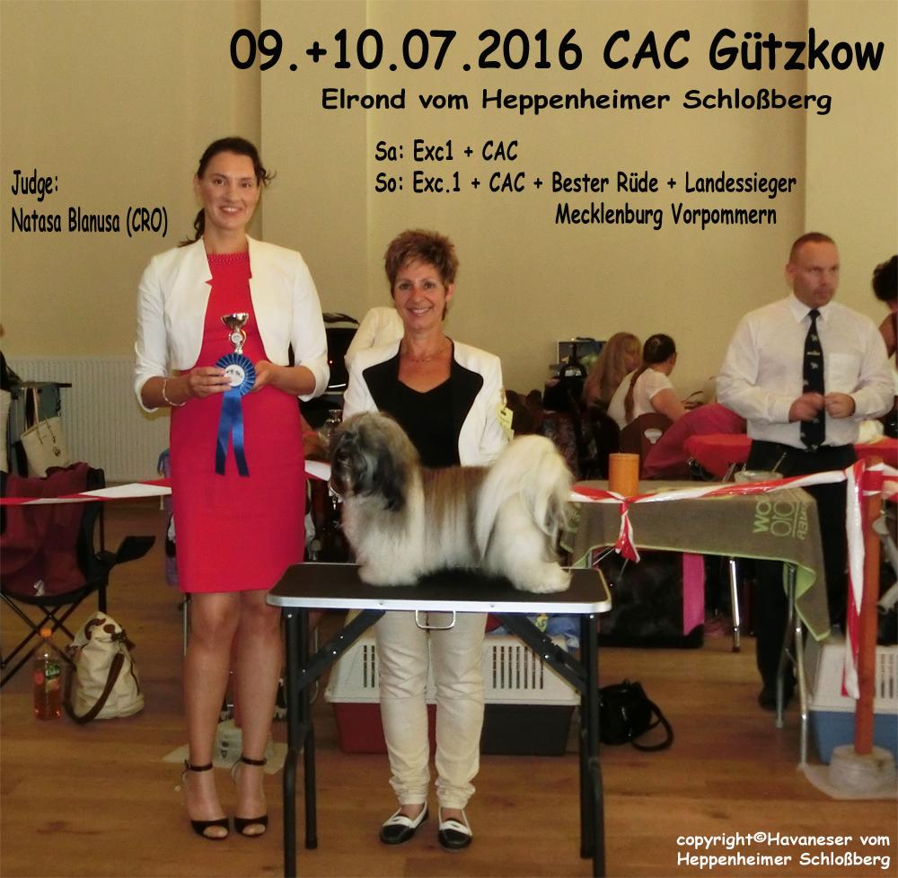 2016-Gützkow