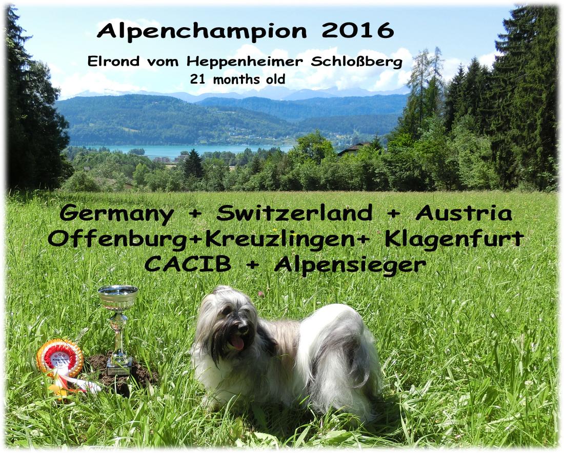 AlpenchampBild