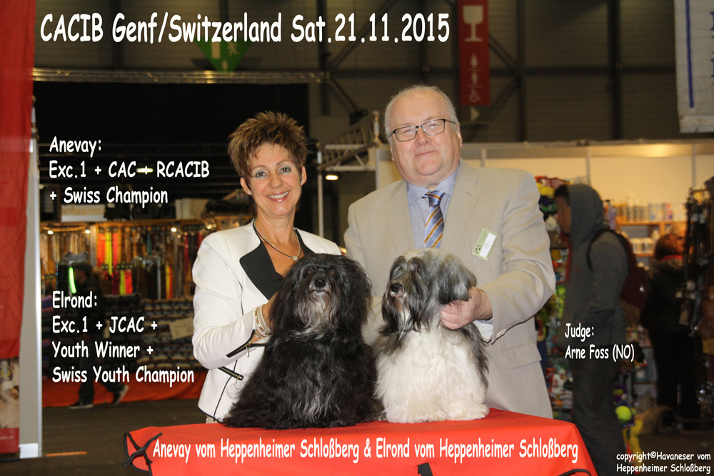 Genf-Samstag-2015