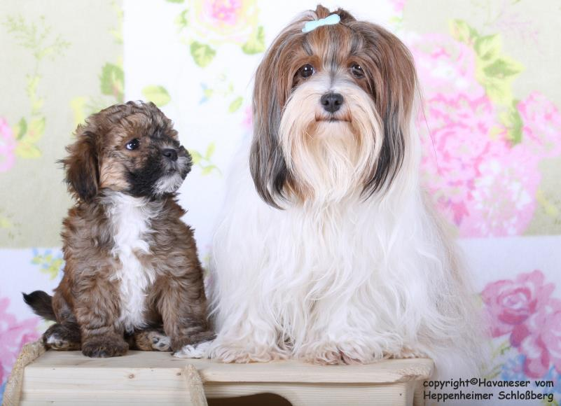 Lilli und Anevaybaby