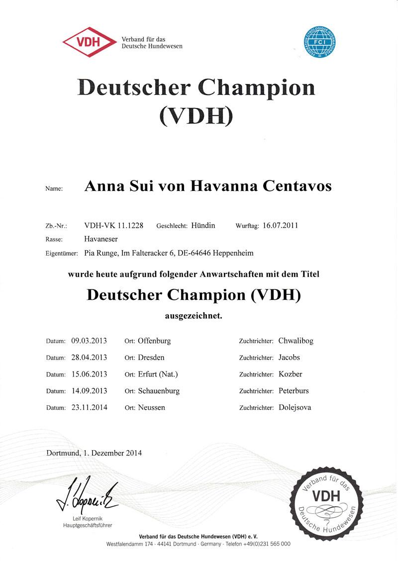 Sunnie-VDH-Champ