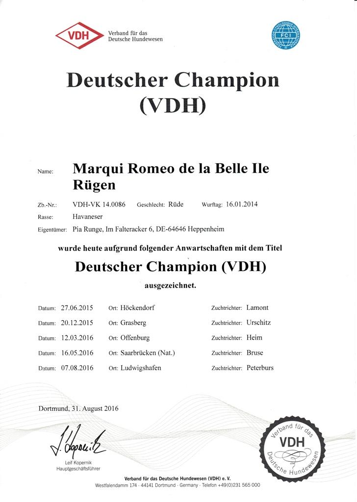 Romeo VDH Champion