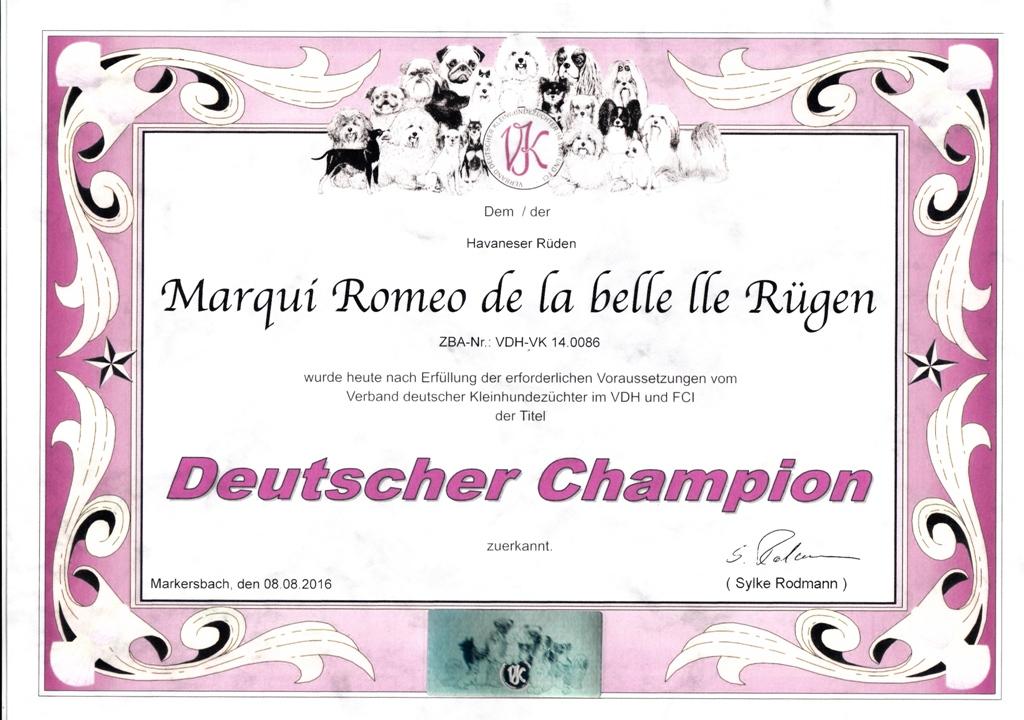 Romeo VK Champion