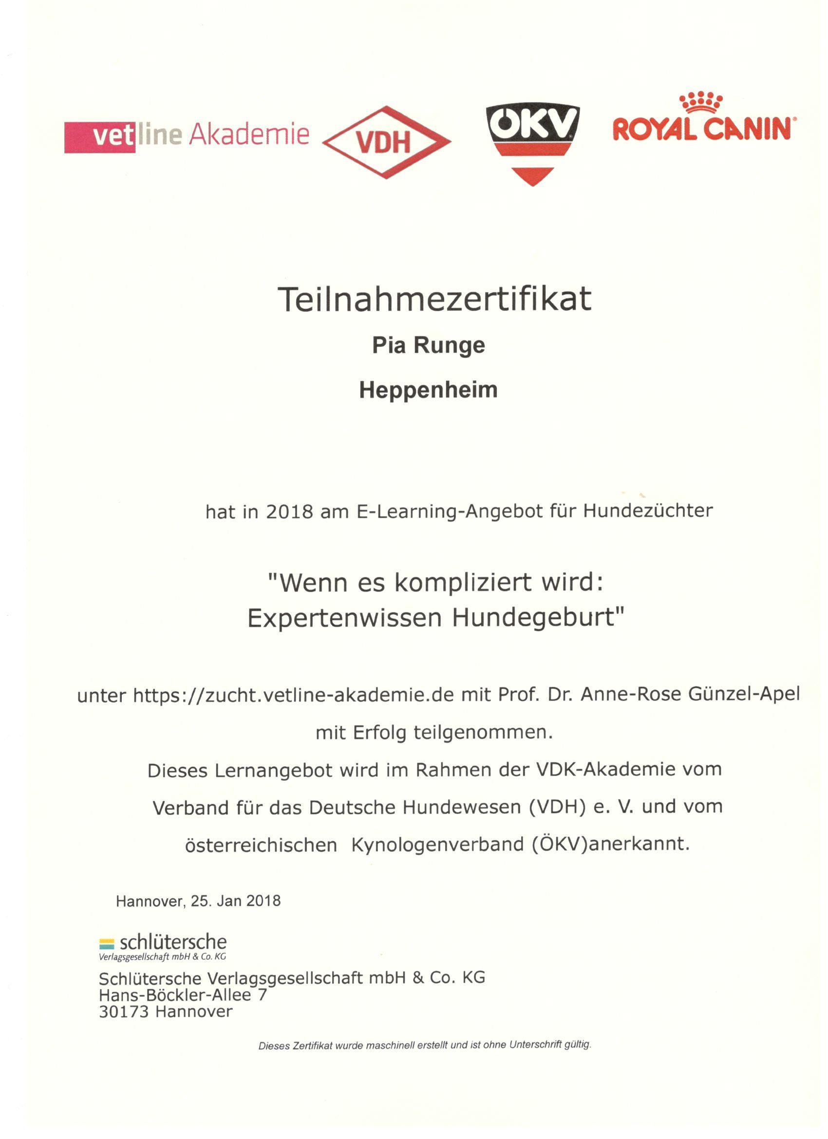 Pia Zerti Geburt VDH   Havaneser vom Heppenheimer Schloßberg